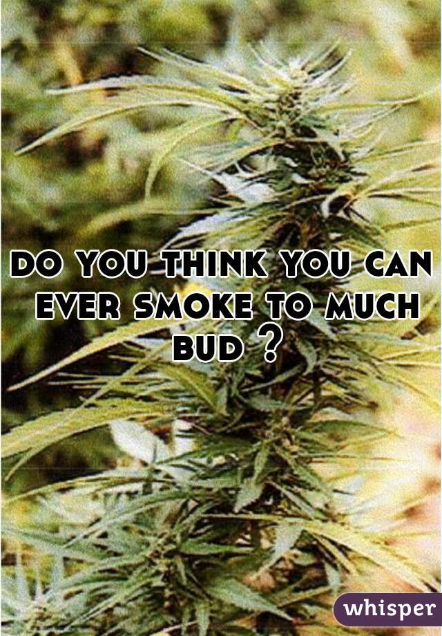 do you think you can ever smoke to much bud ?