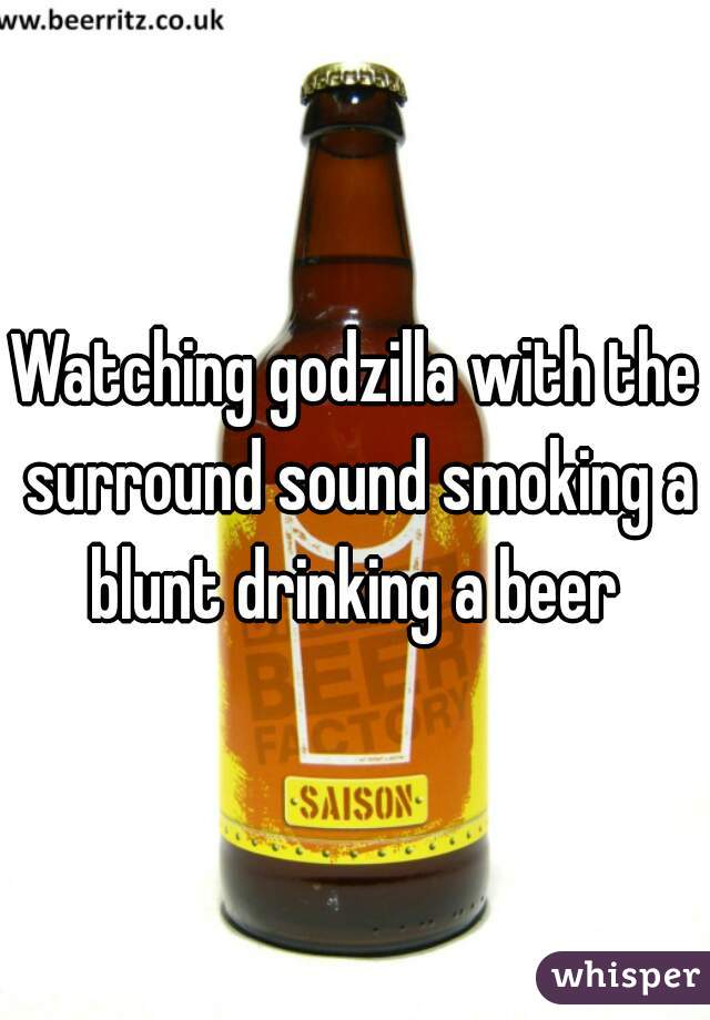 Watching godzilla with the surround sound smoking a blunt drinking a beer