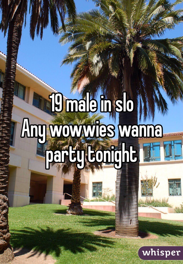 19 male in slo Any wowwies wanna party tonight