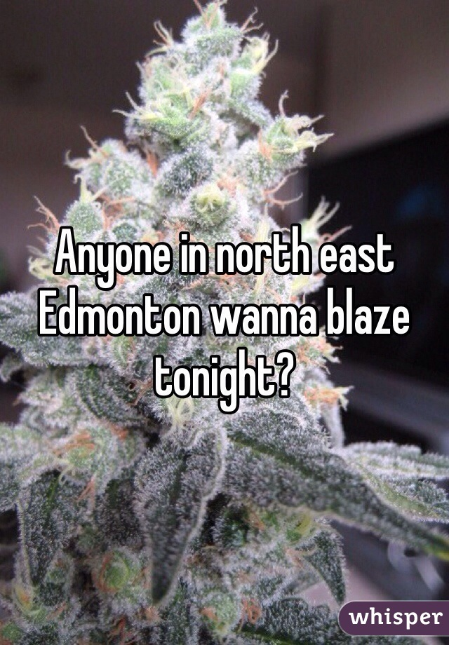 Anyone in north east Edmonton wanna blaze tonight?