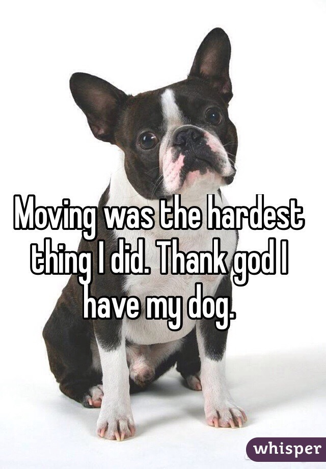 Moving was the hardest thing I did. Thank god I have my dog.