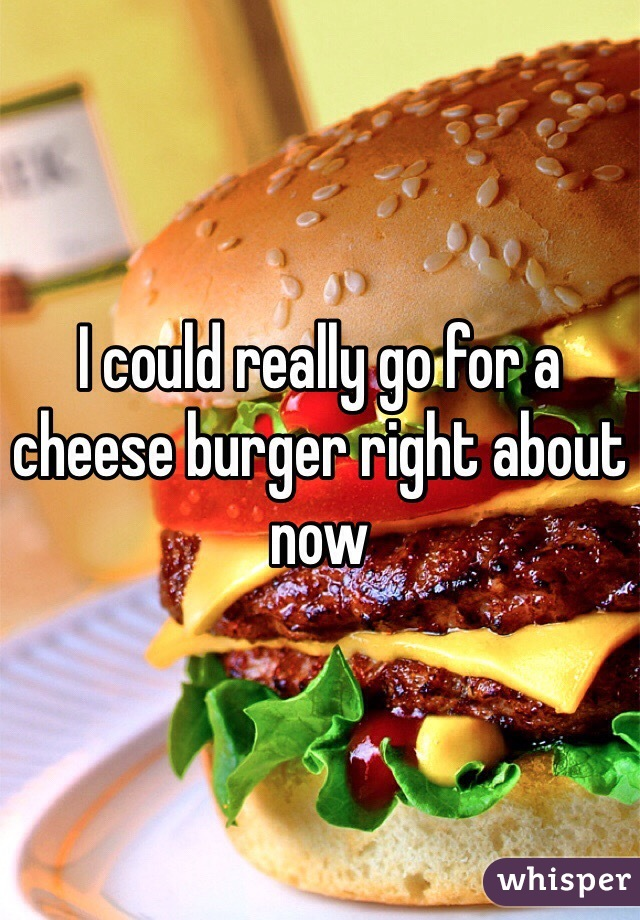 I could really go for a cheese burger right about now