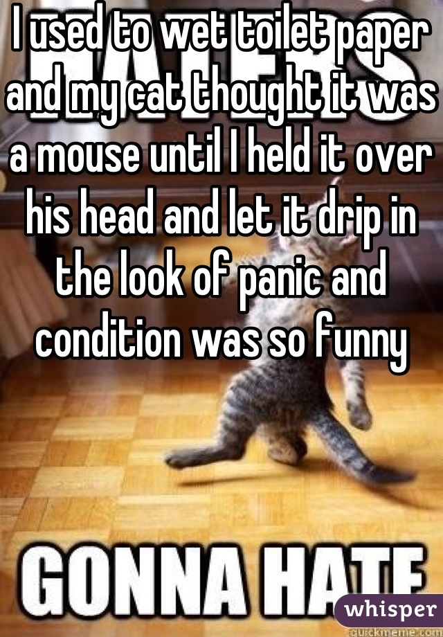 I used to wet toilet paper and my cat thought it was a mouse until I held it over his head and let it drip in the look of panic and condition was so funny