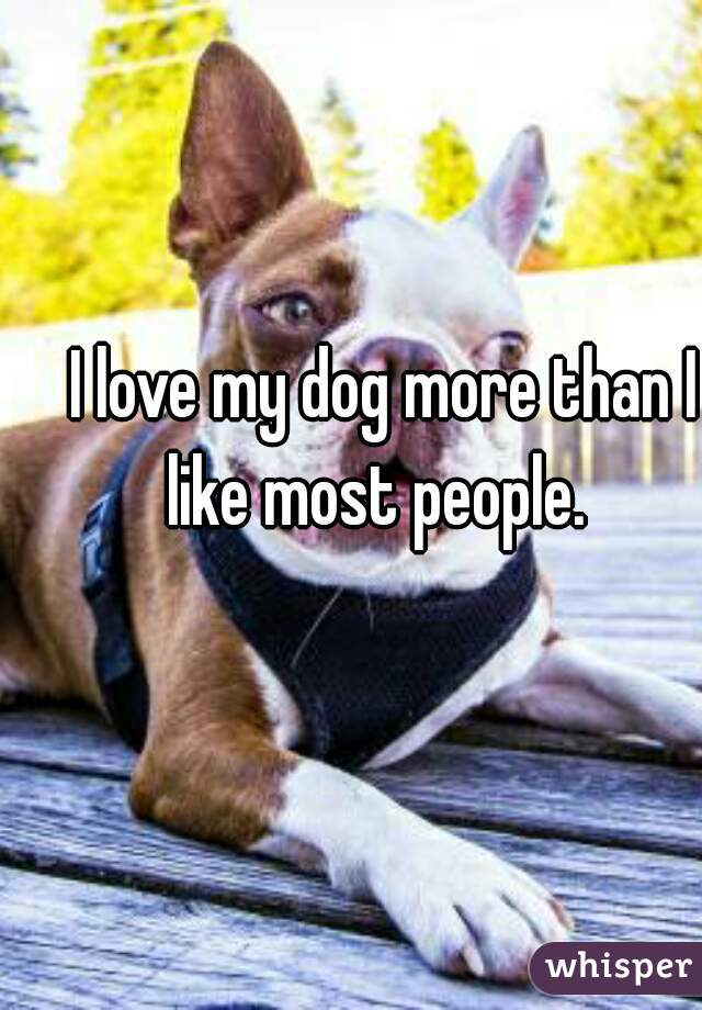 I love my dog more than I like most people.