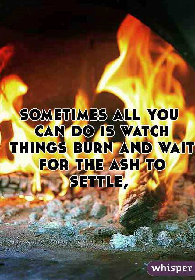 sometimes all you can do is watch things burn and wait for the ash to settle,