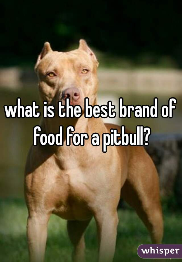 what is the best brand of food for a pitbull?