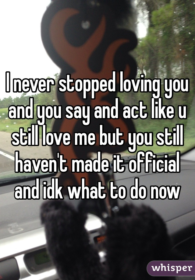 I never stopped loving you and you say and act like u still love me but you still haven't made it official and idk what to do now