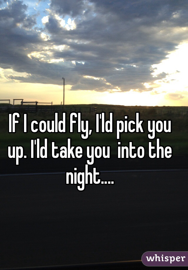 If I could fly, I'ld pick you up. I'ld take you  into the night....