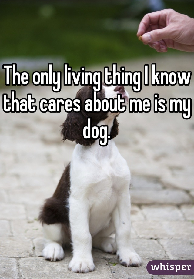 The only living thing I know that cares about me is my dog.