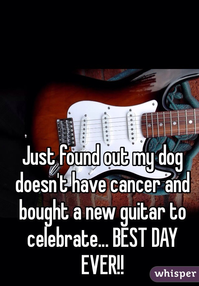 Just found out my dog doesn't have cancer and bought a new guitar to celebrate... BEST DAY EVER!!