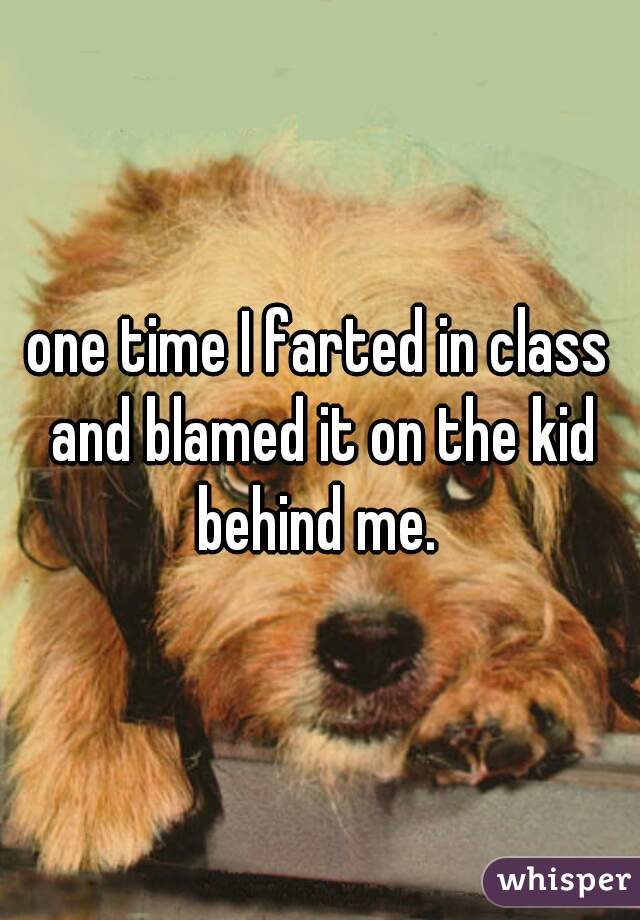 one time I farted in class and blamed it on the kid behind me.