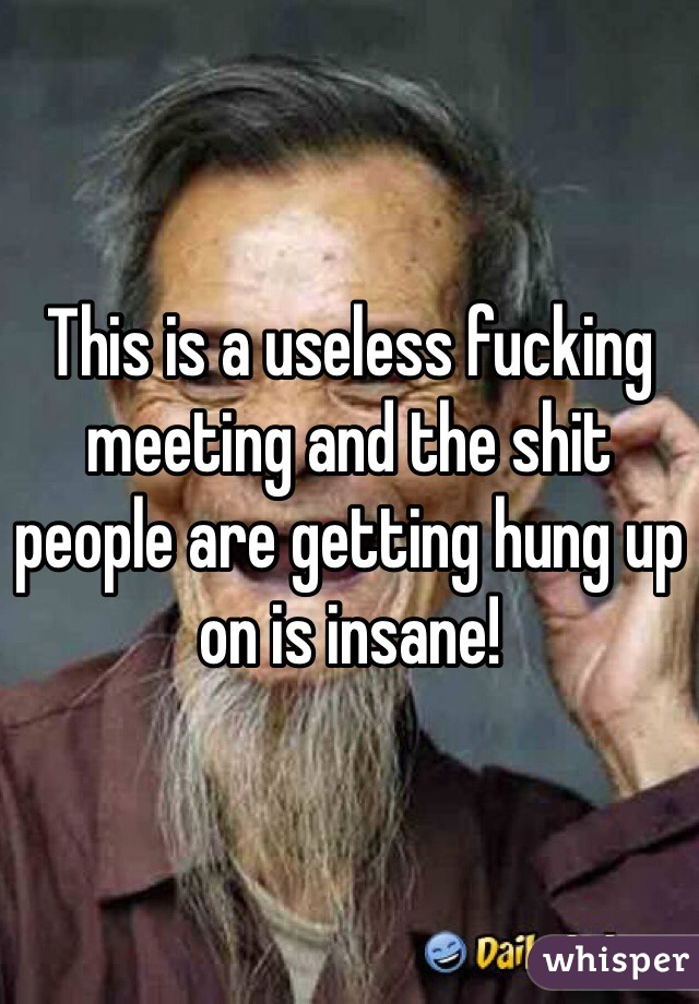 This is a useless fucking meeting and the shit people are getting hung up on is insane!