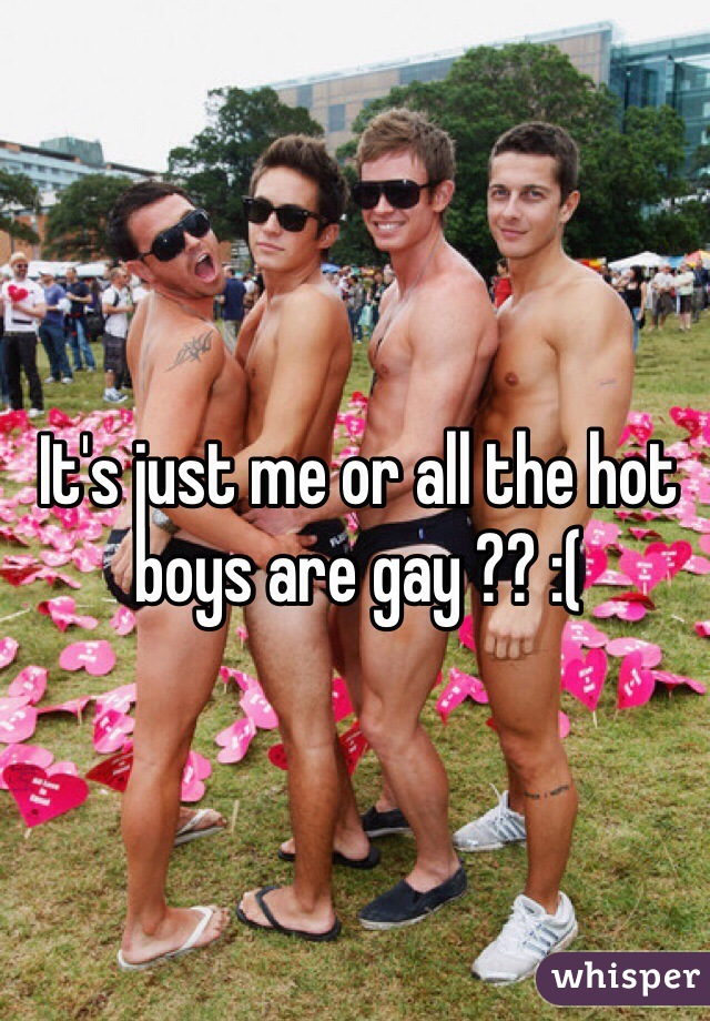 It's just me or all the hot boys are gay ?? :(