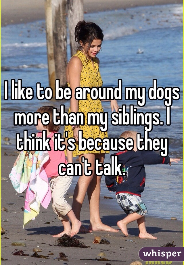I like to be around my dogs more than my siblings. I think it's because they can't talk.