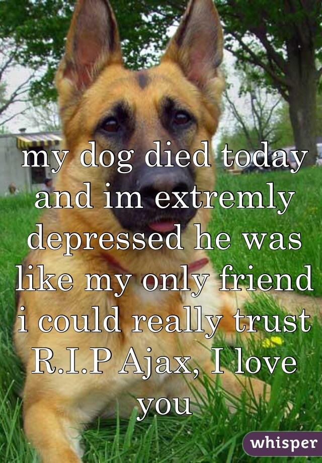 my dog died today and im extremly depressed he was like my only friend i could really trust  R.I.P Ajax, I love you