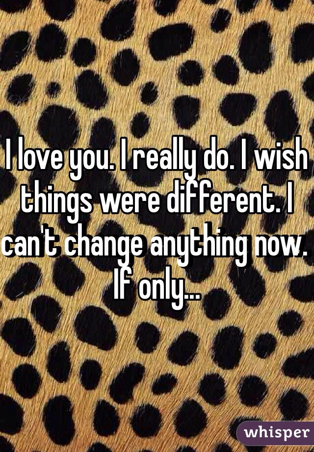I love you. I really do. I wish things were different. I can't change anything now. If only...