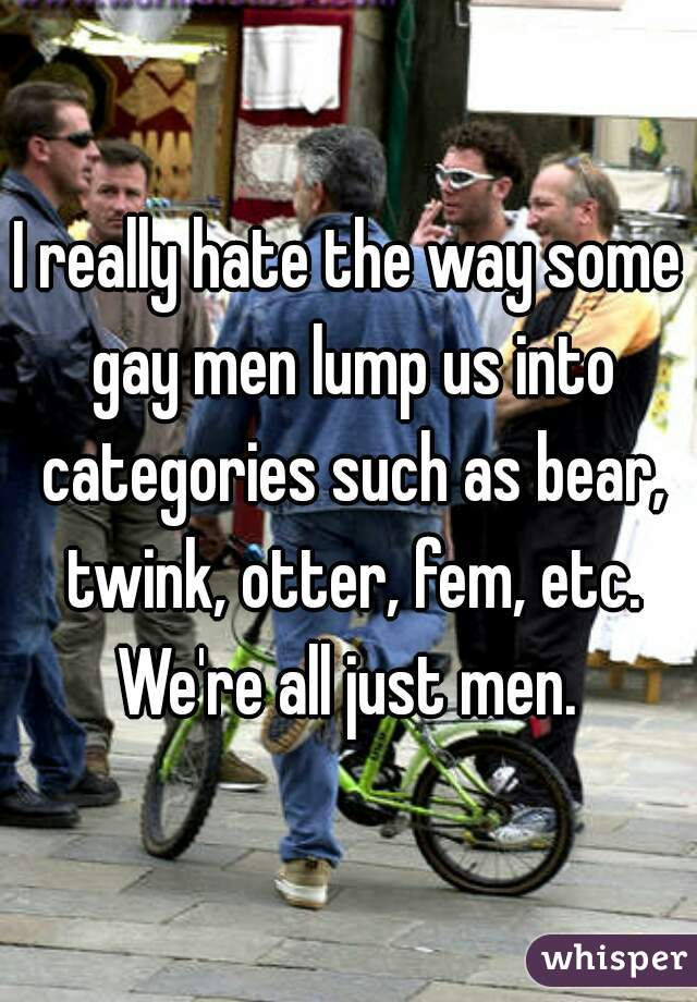 I really hate the way some gay men lump us into categories such as bear, twink, otter, fem, etc. We're all just men.