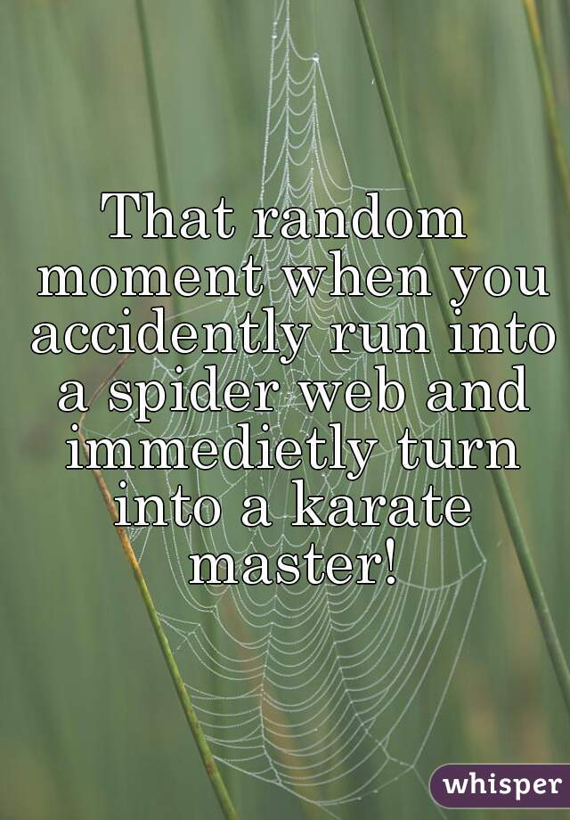 That random moment when you accidently run into a spider web and immedietly turn into a karate master!
