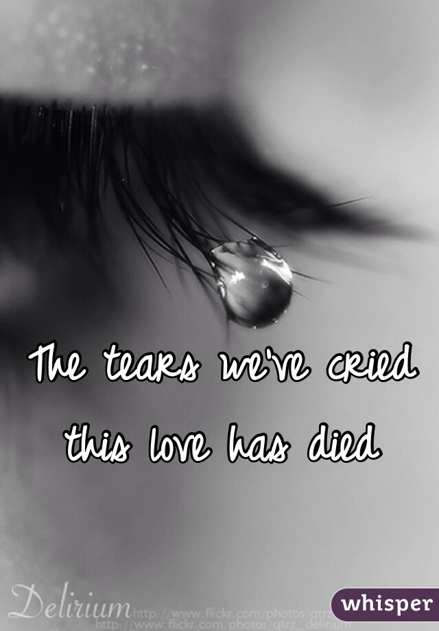 The tears we've cried this love has died