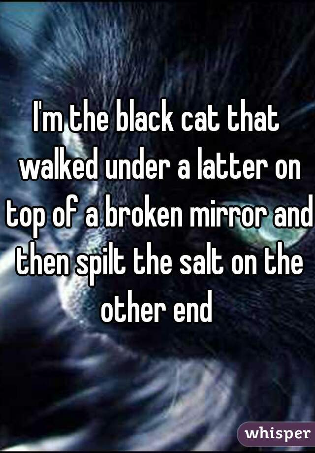 I'm the black cat that walked under a latter on top of a broken mirror and then spilt the salt on the other end