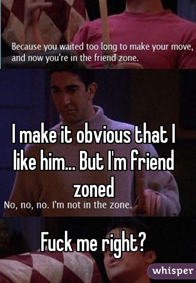 I make it obvious that I like him... But I'm friend zoned  Fuck me right?