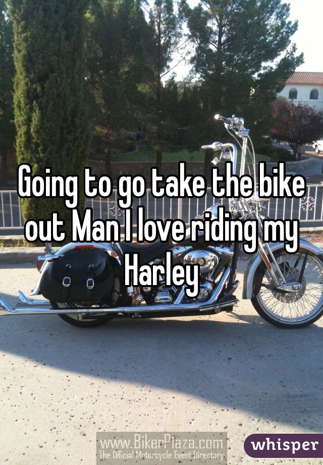 Going to go take the bike out Man I love riding my Harley