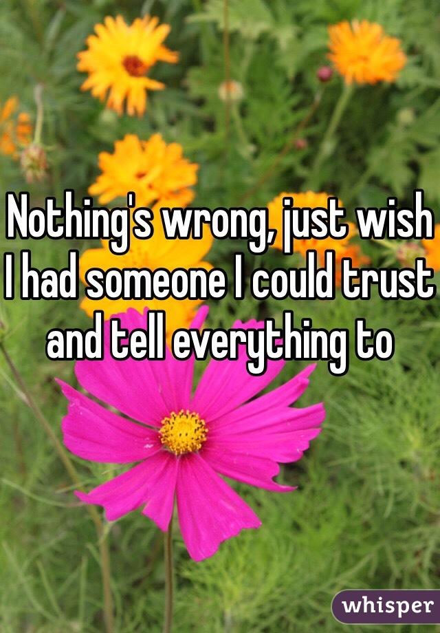 Nothing's wrong, just wish I had someone I could trust and tell everything to