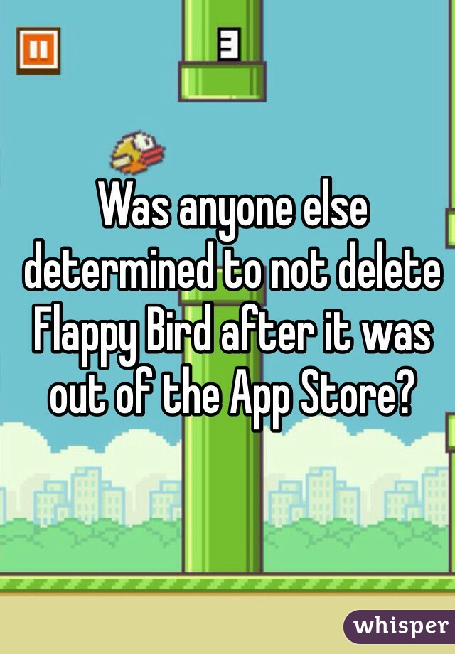 Was anyone else determined to not delete Flappy Bird after it was out of the App Store?