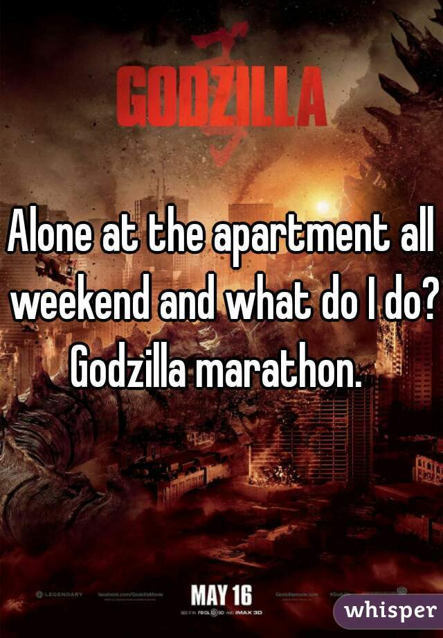 Alone at the apartment all weekend and what do I do? Godzilla marathon.