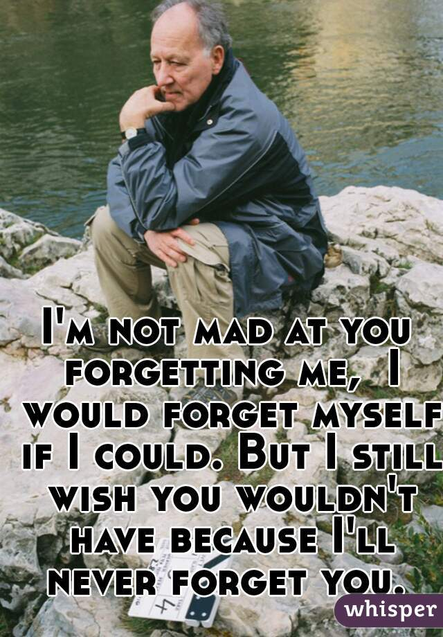 I'm not mad at you forgetting me,  I would forget myself if I could. But I still wish you wouldn't have because I'll never forget you.