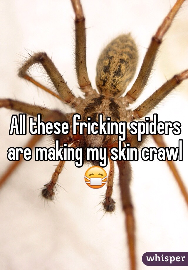 All these fricking spiders are making my skin crawl 😷