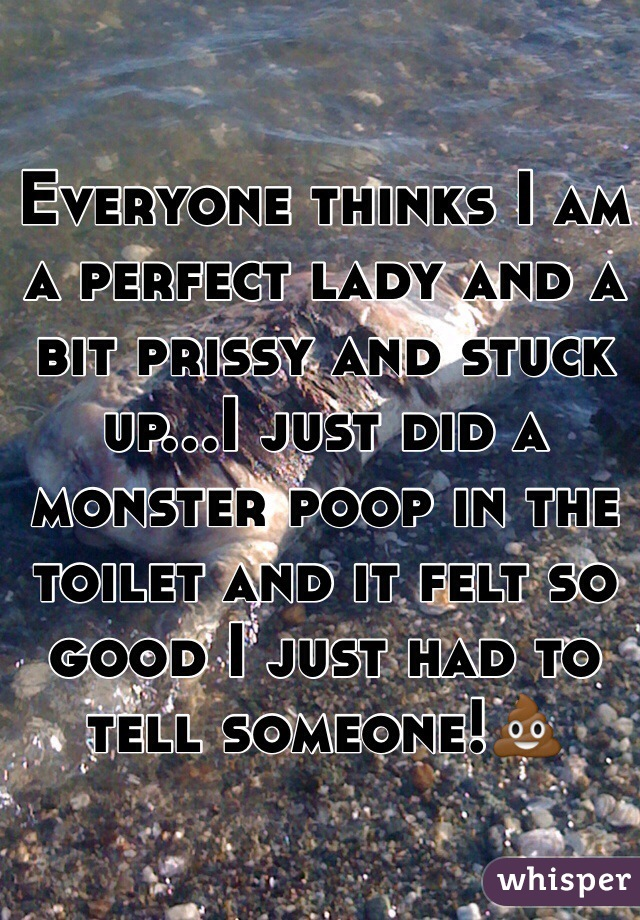Everyone thinks I am a perfect lady and a bit prissy and stuck up...I just did a monster poop in the toilet and it felt so good I just had to tell someone!💩
