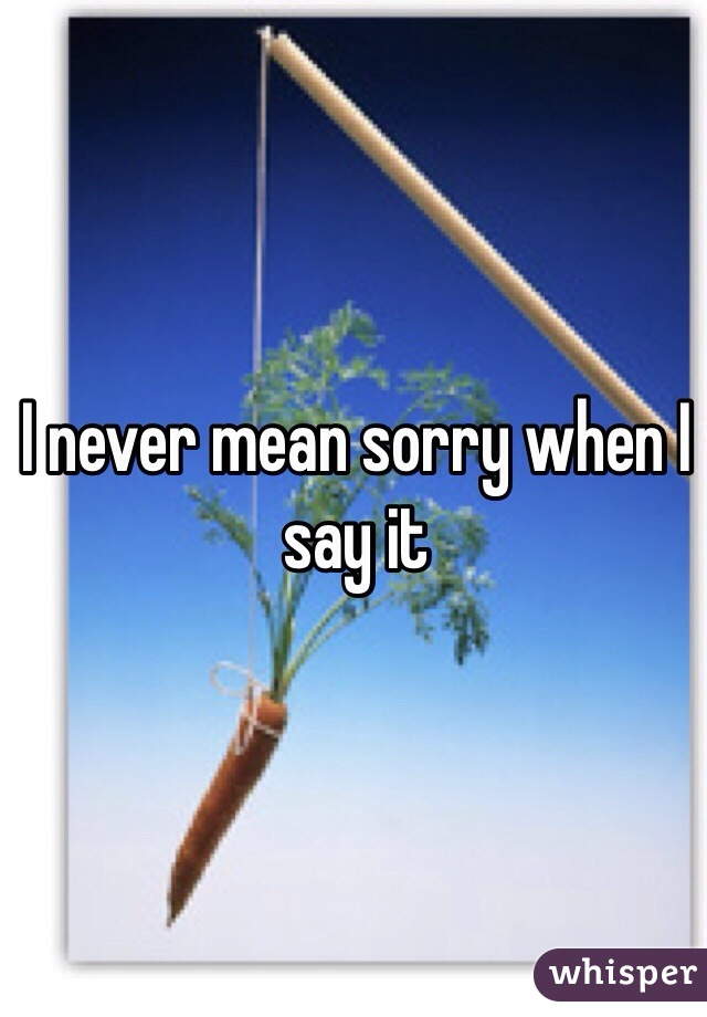 I never mean sorry when I say it