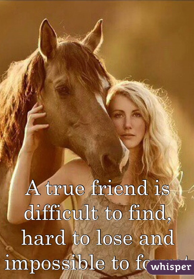 A true friend is difficult to find, hard to lose and impossible to forget