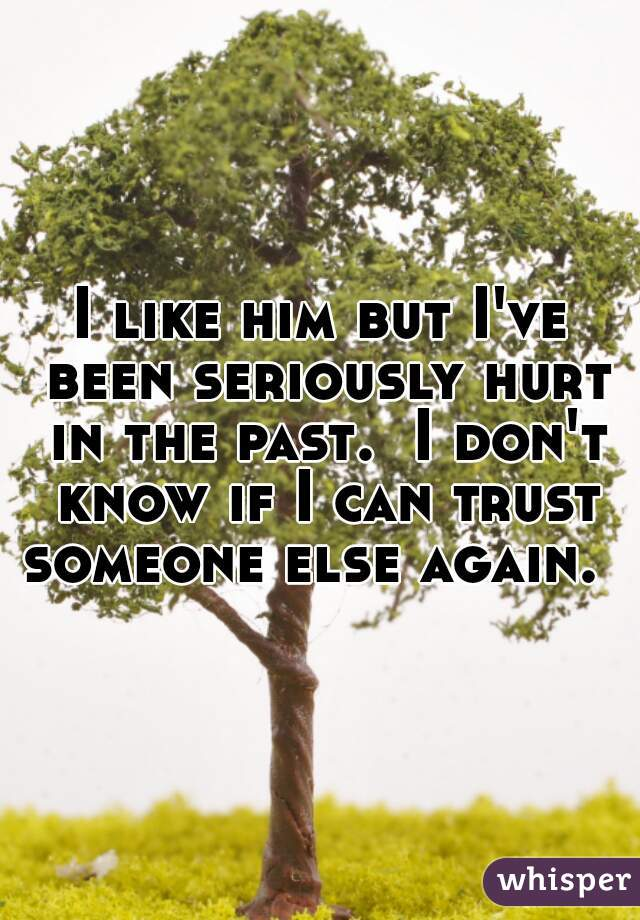 I like him but I've been seriously hurt in the past.  I don't know if I can trust someone else again.