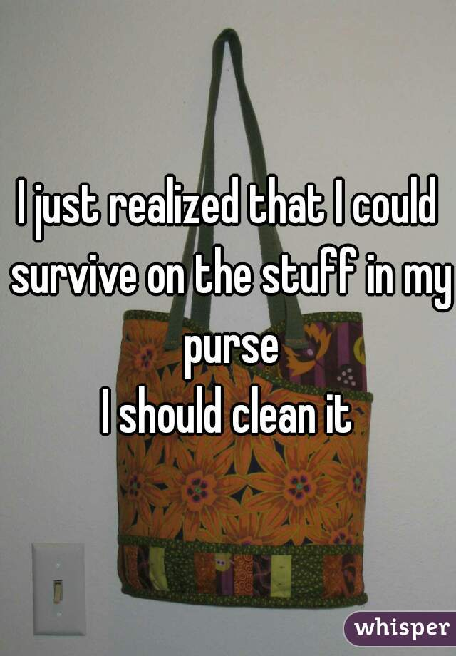 I just realized that I could survive on the stuff in my purse I should clean it