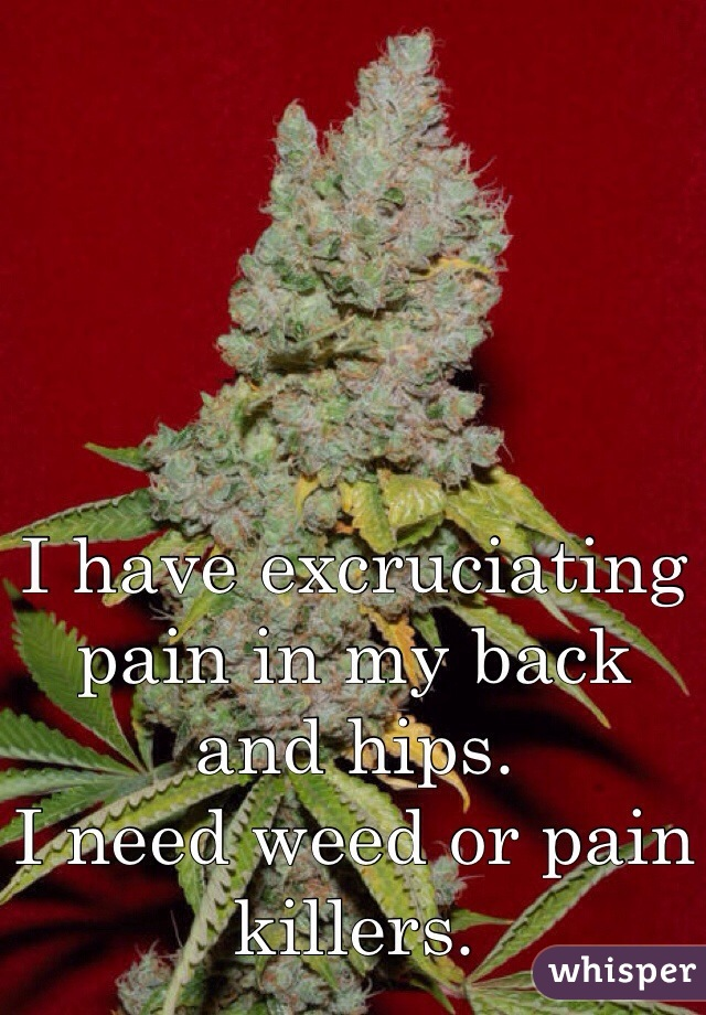 I have excruciating pain in my back and hips.  I need weed or pain killers.