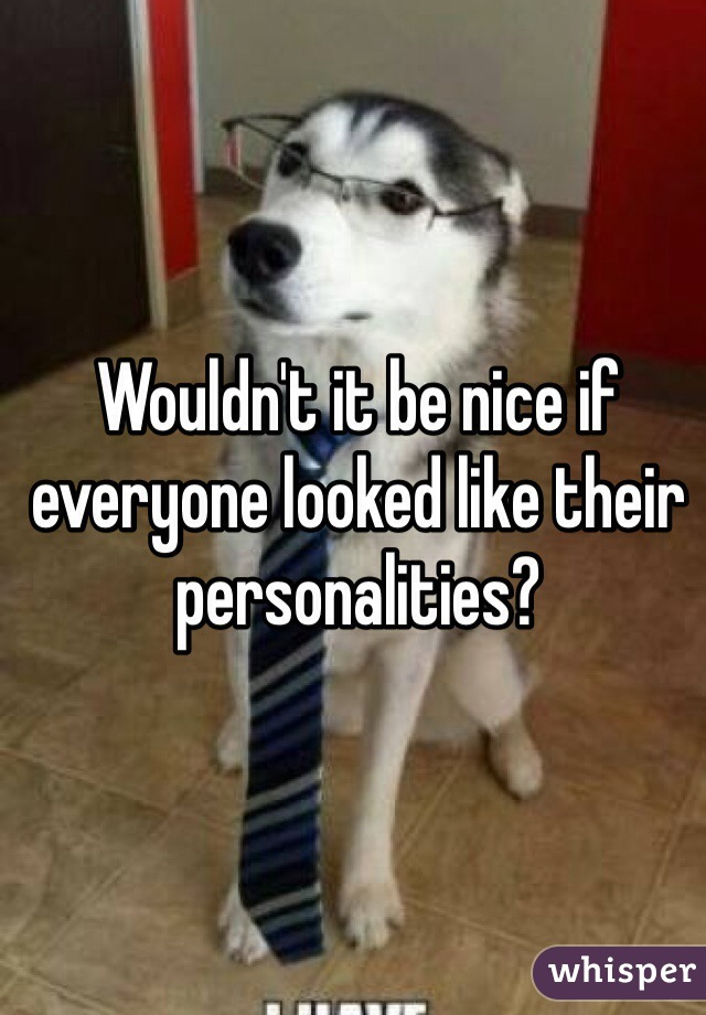 Wouldn't it be nice if everyone looked like their personalities?