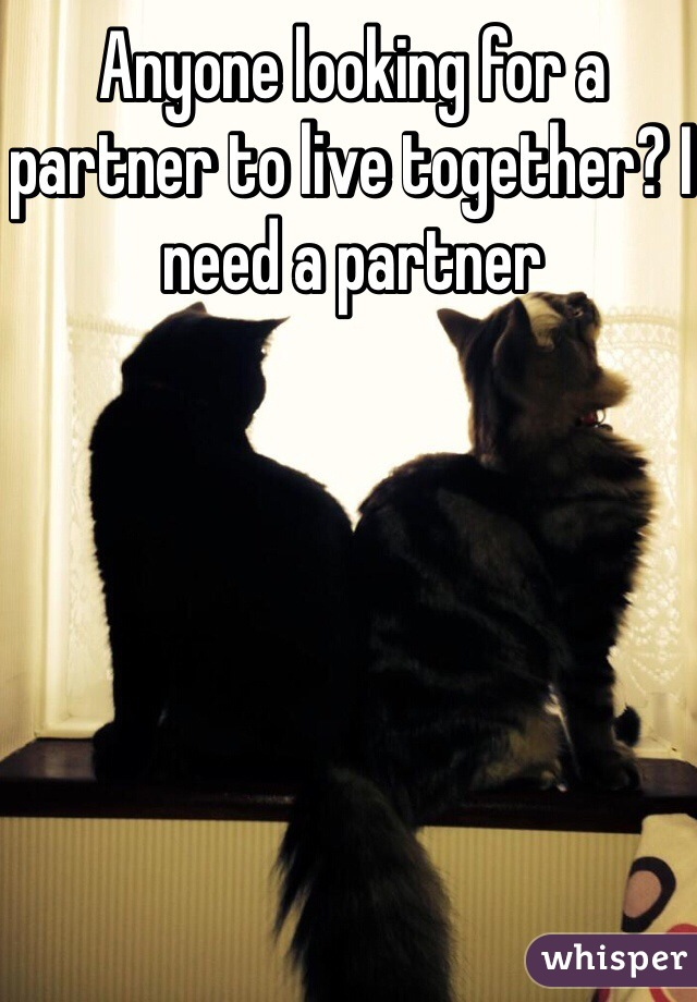 Anyone looking for a partner to live together? I need a partner