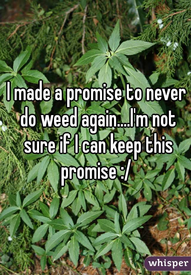 I made a promise to never do weed again....I'm not sure if I can keep this promise :/