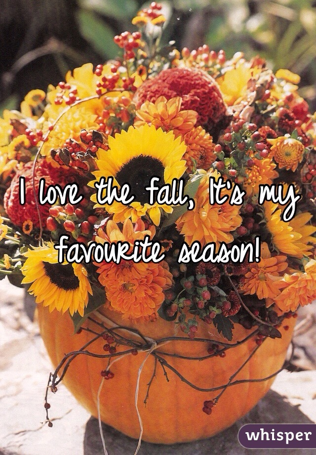 I love the fall, It's my favourite season!