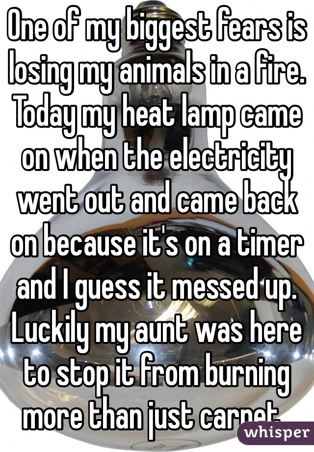 One of my biggest fears is losing my animals in a fire. Today my heat lamp came on when the electricity went out and came back on because it's on a timer and I guess it messed up. Luckily my aunt was here to stop it from burning more than just carpet .
