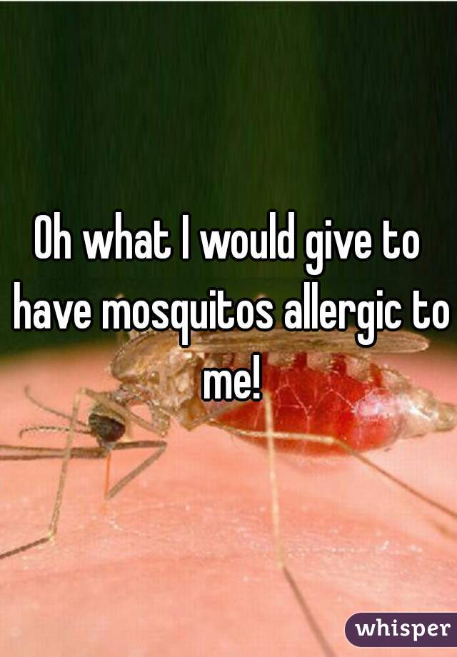 Oh what I would give to have mosquitos allergic to me!