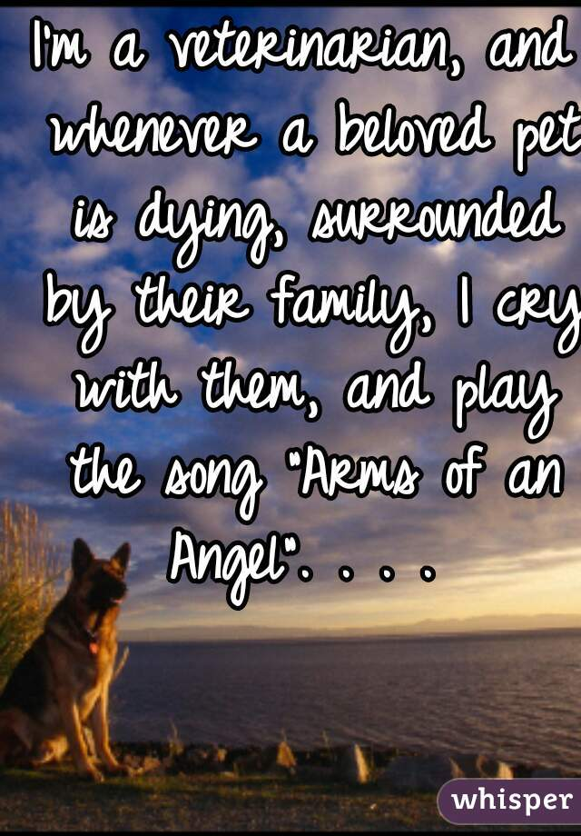 """I'm a veterinarian, and whenever a beloved pet is dying, surrounded by their family, I cry with them, and play the song """"Arms of an Angel"""". . . ."""