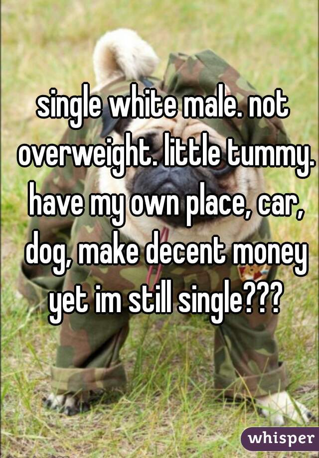 single white male. not overweight. little tummy. have my own place, car, dog, make decent money yet im still single???