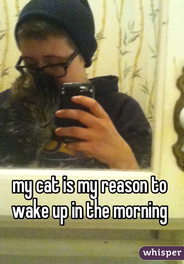 my cat is my reason to wake up in the morning