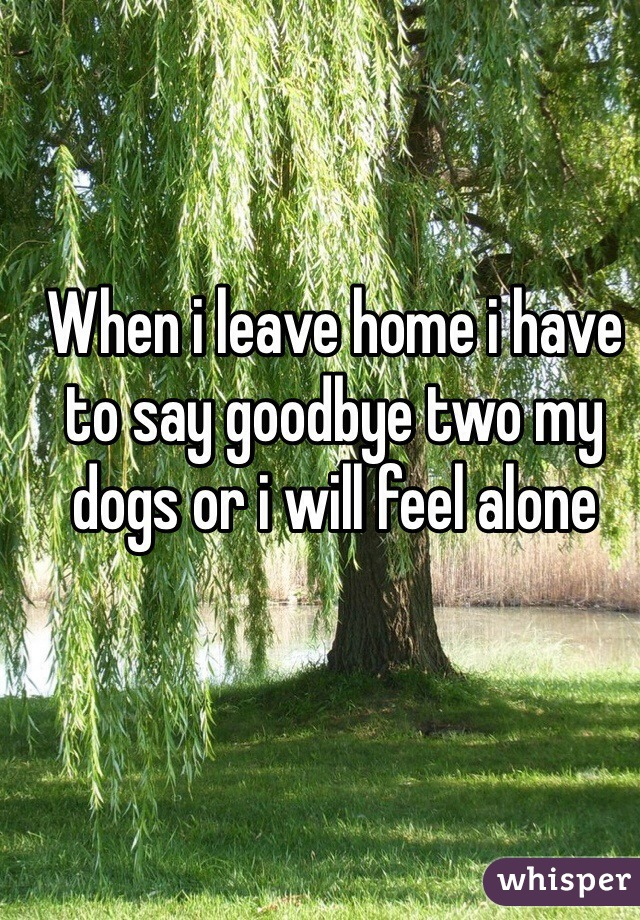 When i leave home i have to say goodbye two my dogs or i will feel alone