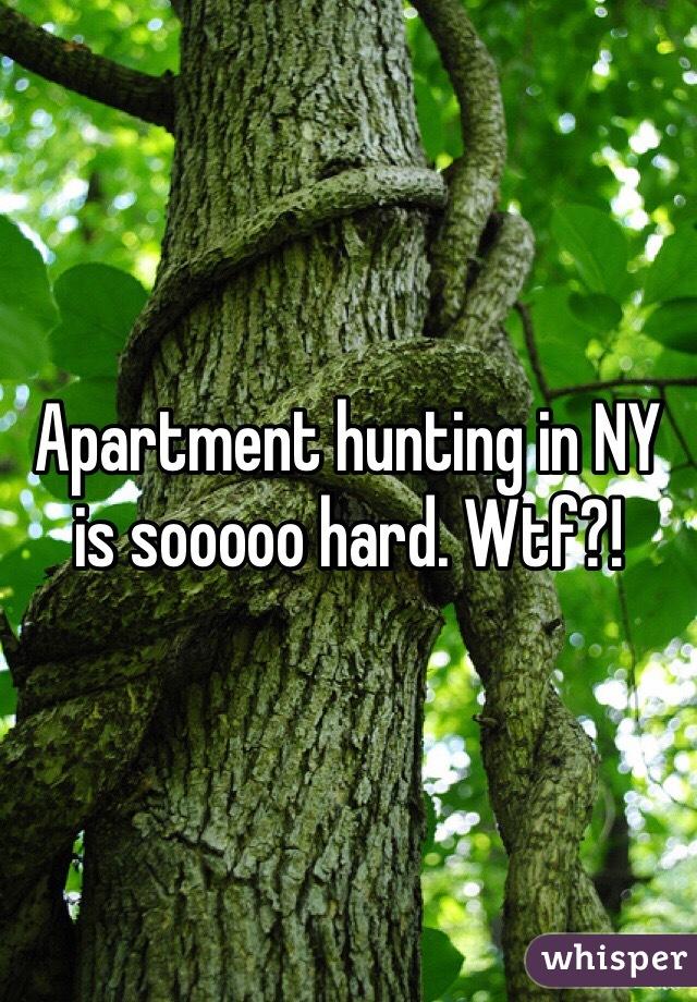 Apartment hunting in NY is sooooo hard. Wtf?!