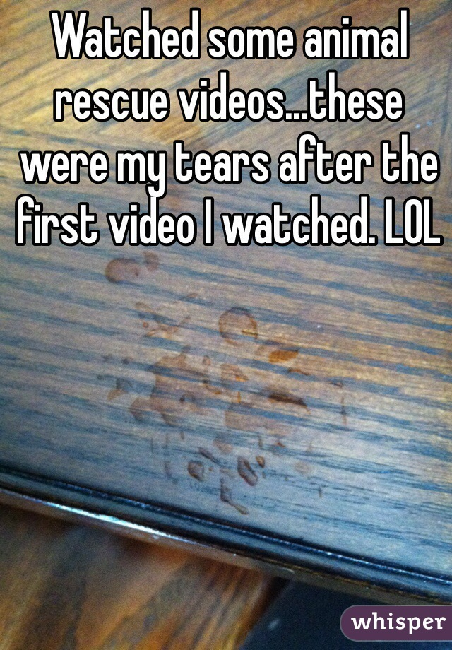 Watched some animal rescue videos...these were my tears after the first video I watched. LOL