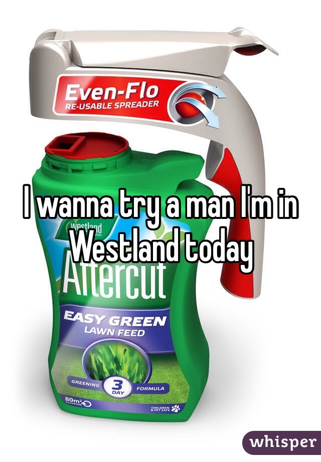 I wanna try a man I'm in Westland today